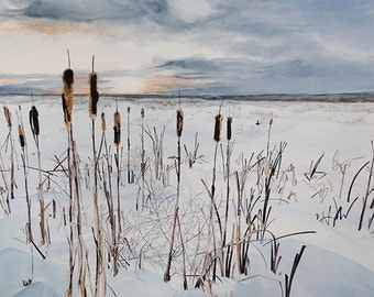 Cattails in the Snow - Pussy Willows Wyoming - 11 x 14 print