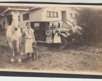 Vintage/ Antique beautiful photo of a family and their pets