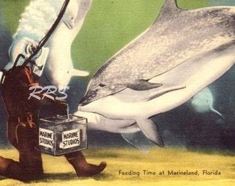 Instant Download Printable Art, Marineland Underwater Diver Florida Linen Postcard - Digital Download