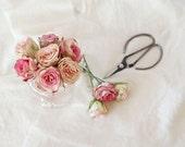 Vintage Charm- Floral Still Life Photograph, Pink Roses, Pink White, Romantic Feminine Decor, Floral Art, Rose Photo, 8x10 Fine Art Print