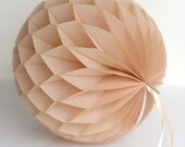 TAN honeycomb ball - various sizes - pompoms party decorations- hanging decoration