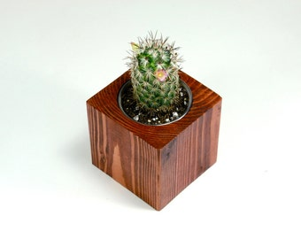Small Wood Cube Cactus Planter - Modern Wood Planter, Modern Cactus Planter, Small Cactus Pot, Modern Cactus Vase (Plants NOT Included)