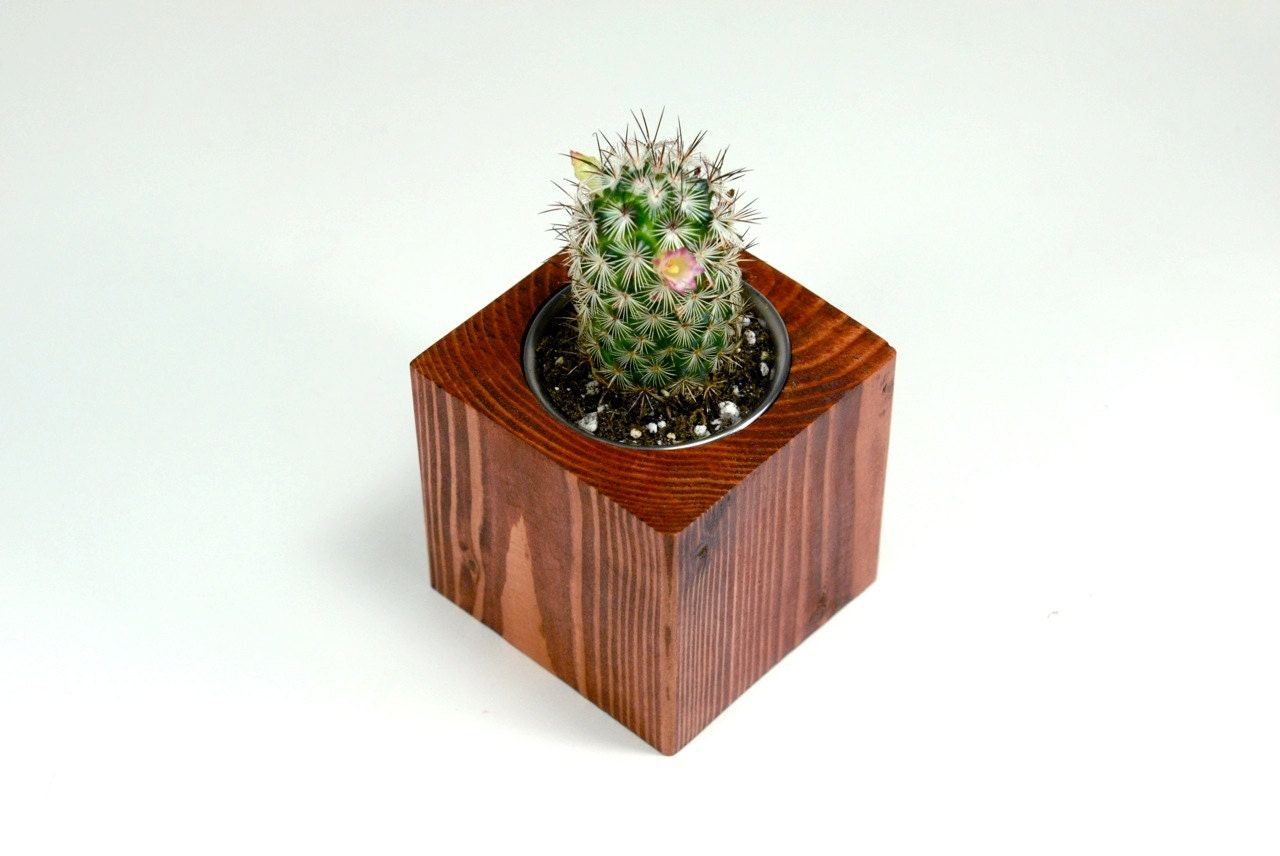small wood cube cactus planter modern wood planter modern