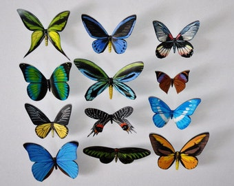 3D Butterfly Magnets, Insects, Refrigerator Magnets Set of 12, Handmade, Home Decor, Gifts,