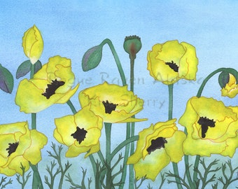 Blue Skies and Sunshine Poppies - print of bright, yellow poppies against mellow blue sky