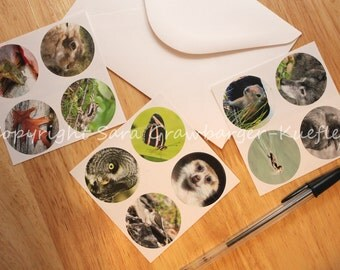 Nature Photo Stickers (Round) - Set of 12