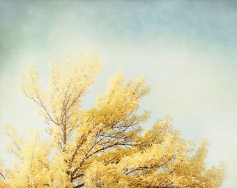 Autumn Photography, Oversized Print, Yellow Tree Wall Art, Yellow and Gray Home Decor, Fall Picture, Living Room Photograph