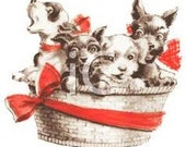 CUSTOM GIFT BASKET - For Multiple Pooches all Sizes