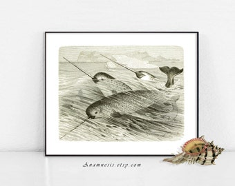 NARWHAL DANCE - digital download - printable antique ocean illustration for framing, totes, cards, fabric, etc. - lovely sea life print