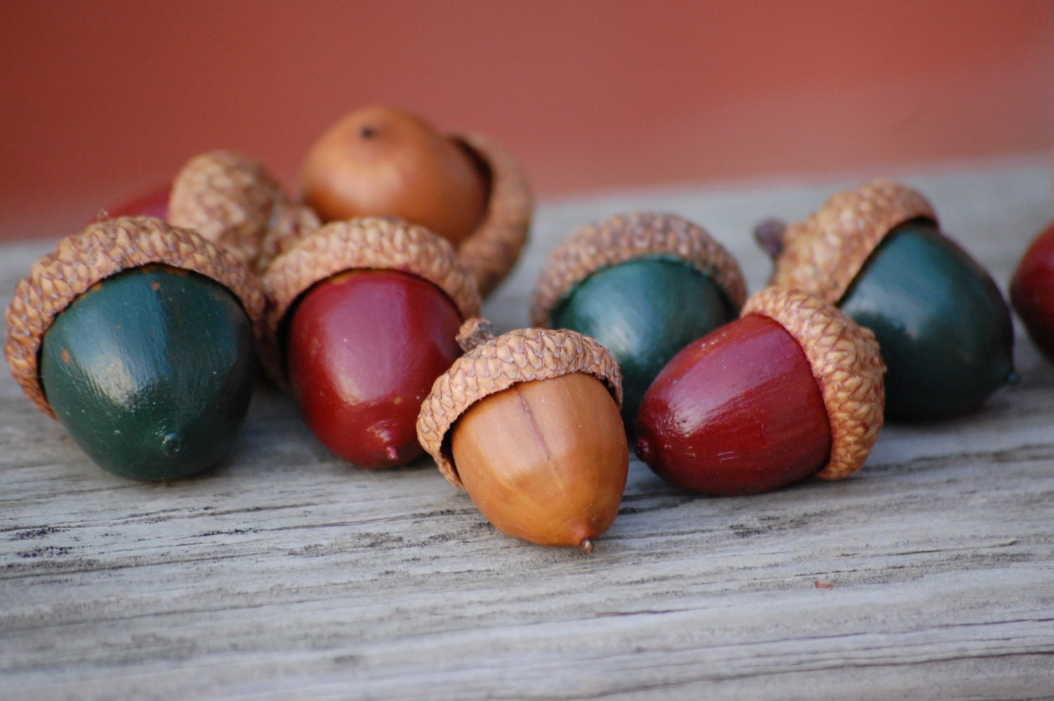 25 painted acorns real acorn beautiful christmas decoration for Acorn decoration