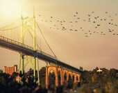 Landscape Bridge Photo Portland Oregon St. Johns Bridge Flying Geese