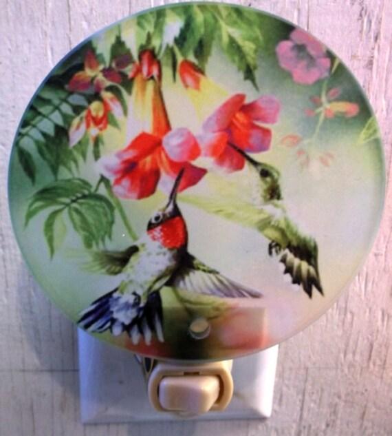 hummingbird night light, bird night light, wildlife night light, pretty light, decorative light, bathroom night light, kitchen night light