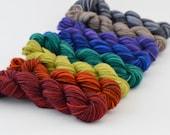 Mini Skein Set-Muted Rainbow