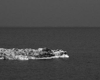 Lake Michigan Iceberg