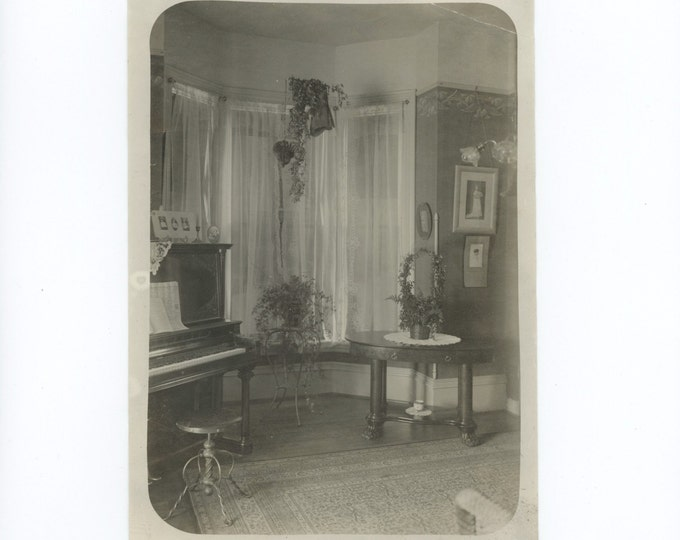 Parlor Interior, Early 1900s: Antique Photo 5x7 (54352)
