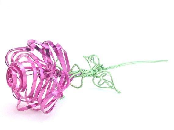 Pink Wire Rose