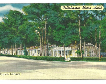 Postcard TALLAHASSEE FLORIDA Motel Retro Linen Color  Post card