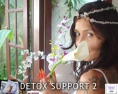 Detox Support 2 - CD and Crystal Healing Necklace to Release Negavity, and 8 Hours of Mixed Intuitive & Therapy Sessions Support with Jelila