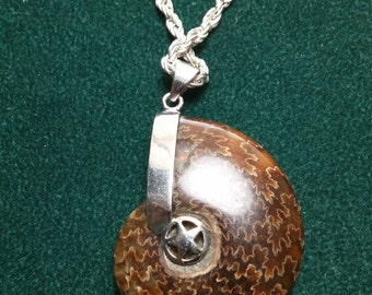 Ammonite Fossils Shell Silver Tone Necklace