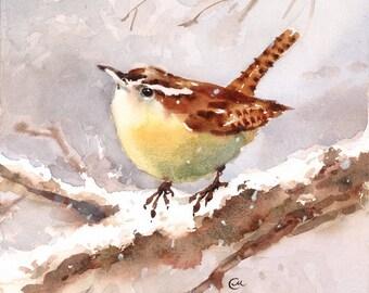 Watercolor Wren - Original Bird Painting 7 x 7 inches Winter