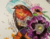 Robin Watercolour A4 Print