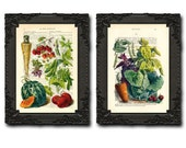 Poster kitchen, fruits and vegetables, rustic kitchen decor wall hanging. Vegetable gardening gift, set of 2 prints, kitchen art print 8/154