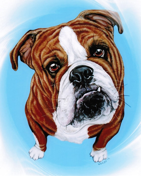 Bulldog English Bulldog Bulldog Art Bulldogs by ArtbyWeeze