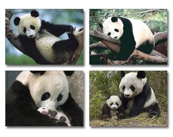 Set of 4 Cute Panda Fridge Magnet