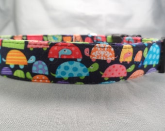 Lucky Turtles Dog Collar