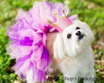 Dog Birthday Princess Tutu and Crown- Not a One Size Fits All! Read Description for size!
