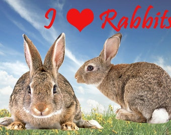 I Love Rabbits Fridge Magnet 7cm by 4.5cm,