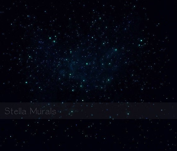 Glow Stars For Ceiling: Glow In The Dark Star Ceiling Canopy Night Fall