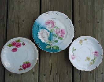 Vintage Rose Motif Plates