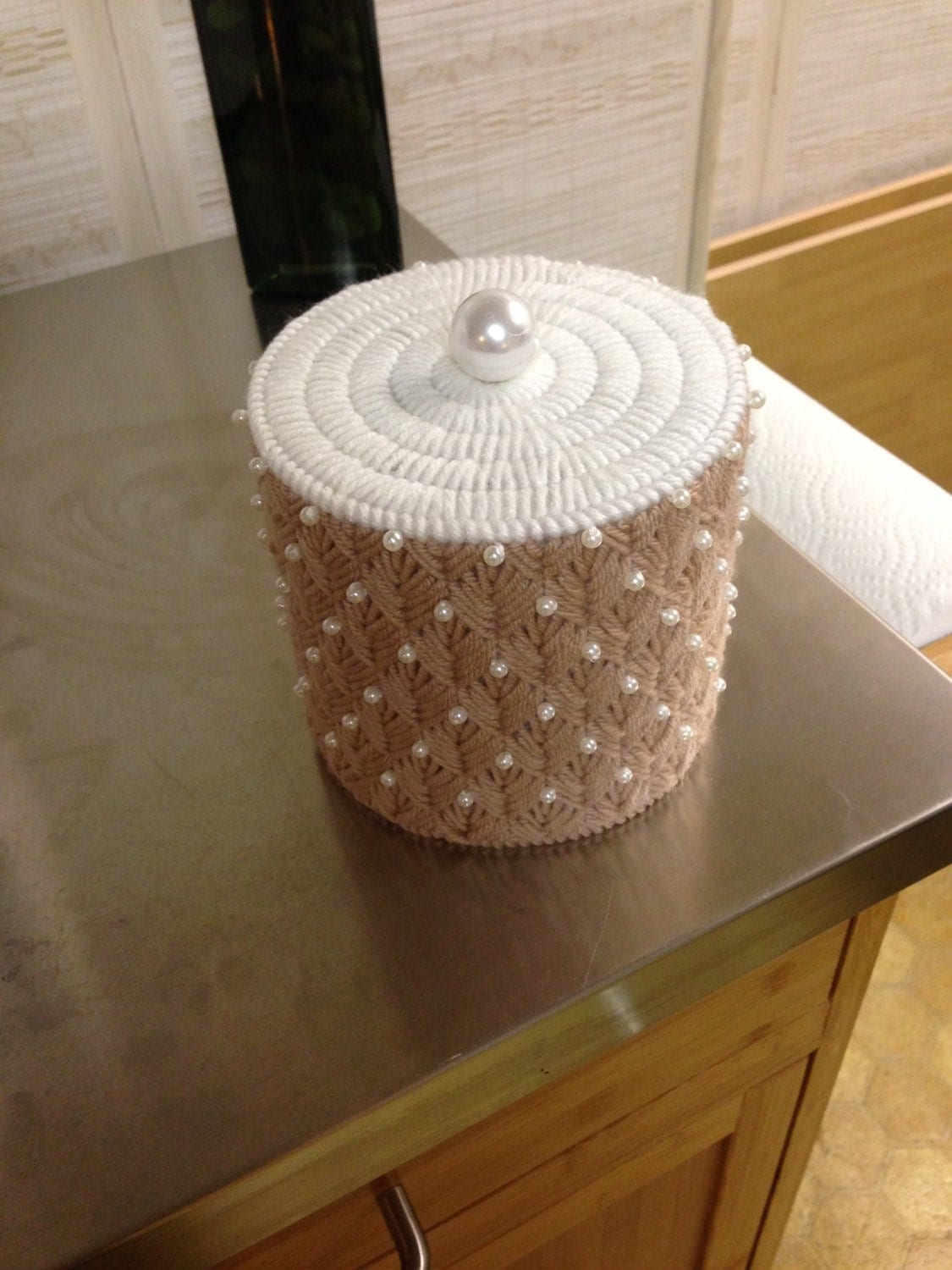 Plastic Canvas Toilet Paper Cover
