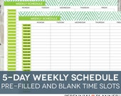 Daily Schedule Printable, Editable Times, Half-Hourly Weekly Weekday Planner for Moms, Homeschool Planner, Chevron Theme, Instant Download