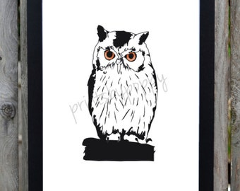 Black and White Owl - Forest Series - Digital Download