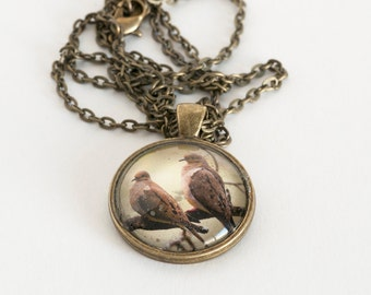 Mourning Doves Photo Pendant Necklace - Photo Jewelry - Mourning Doves Necklace - 24 Inch Antique Brass Plated Curb Chain Incl