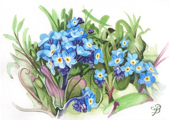 Myosotis aquarelle originale livraison gratuite for Aquarelle livraison fleurs