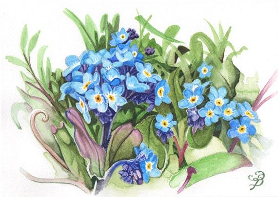 Myosotis aquarelle originale livraison gratuite for Aquarelle fleurs livraison gratuite