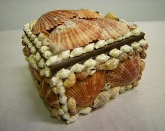 seashell box-beach-souvenir-vacation-jewelry-trinkets-shells-beach-summer-