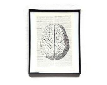 Brain mind Anatomy vintage art print encyclopedia old book pages image poster