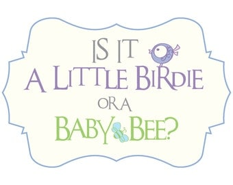 Gender Reveal Party Decor - Birds and Bees