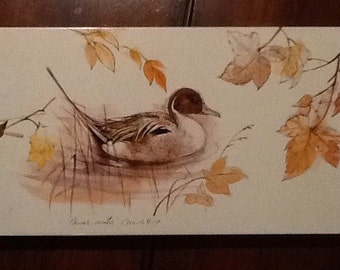 Vintage collectible tin with fantastic graphics of a duck in water with leaves. Lid comes off. Approximately 8 3/4 inches by 5 inches and ov