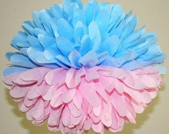 Gender Reveal Party Decorations, Baby Shower Decorations For Twins, Pink and Blue Pom Poms, Multi Color Pom Poms