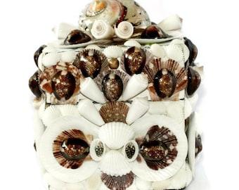 Brown and White Beach Decor Shell Box -Seashell Jewelry Box