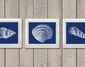 Sea Shells Set of 3 Prints Navy Blue White Wall Decor Nautical Print Ocean Art Marine Beach House Bathroom Nursery Shell