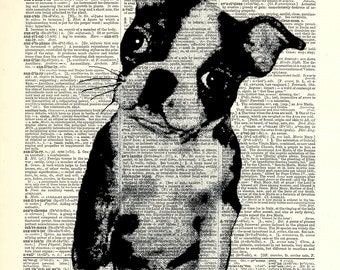 "Boston Terrior Dog print. Vintage book page art print.  Print on book page. Fits 8""x10"" frame."