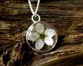 Real Irish Blackthorn fairy flower pendant on a sterling silver chain.