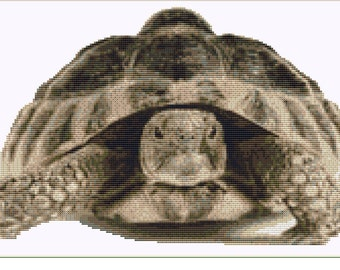 CROSS STITCH KIT- Tortoise 33cm x 21 cm