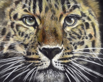 Amur leopard Limited Edition art  Mounted large print of a beautiful rare Amur Leopard direct from artist studio